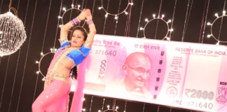 Don Hazarachi Gulabi Note Features In Mansi Naik's New Song